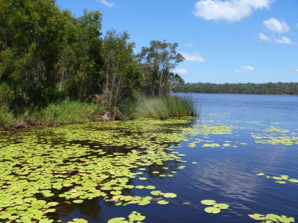 Leslie Harrison Reservoir, Australia